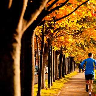 Autumn Cardio Workout Part 2