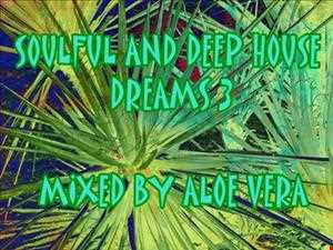 SOULFUL AND DEEP HOUSE DREAMS 3