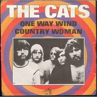 The Cats   One Way Wind. One Way Dancemix by Jonas Mix Larsen.