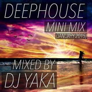 DeepHouse Mini Mix - DJ Yaka (January 2015)