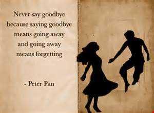 Never Say Goodbye ft Sunny Crimea and Kyshido