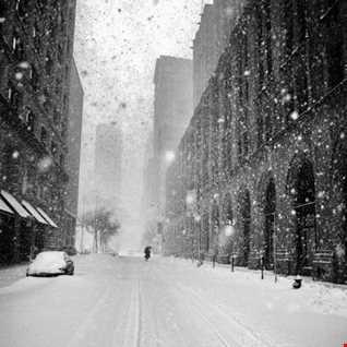 The Winter Shake Down