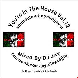 You're In The House Vol 12
