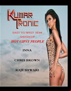 East 2 West Smash Up - Hot Gipsy People Blueprint (Chris Brown, Inna, Rajé Shwari vs EDM DJs)