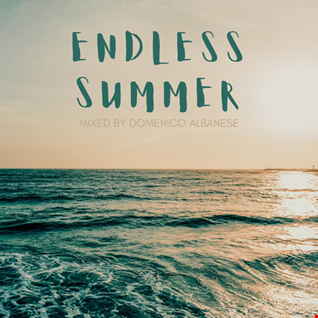 Endless Summer   Mixed by Domenico Albanese