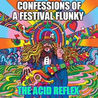 confessions of a festival flunky