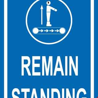 Remain Standing - House