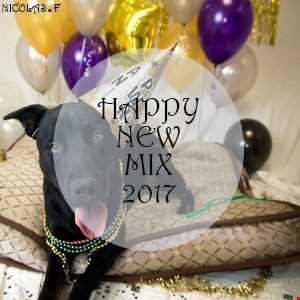 Happy New MIX 2017