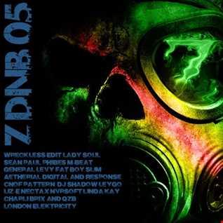 Z-DnB#05