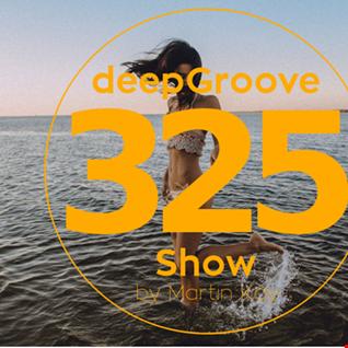 deepGroove Show 325