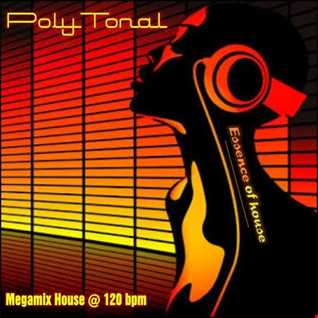 PolyTonal   Essence of House (Megamix)