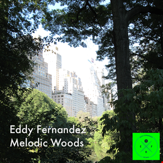 Eddy Fernandez - Melodic Woods