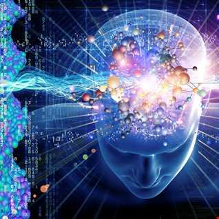 A Fluid Consciousness