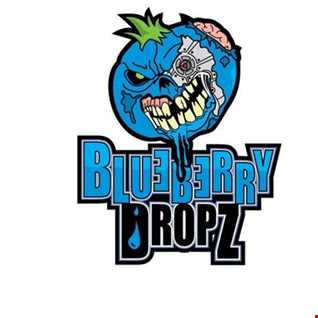 [G HOUSE]blueberry dropz   aint nothing but a g house thang