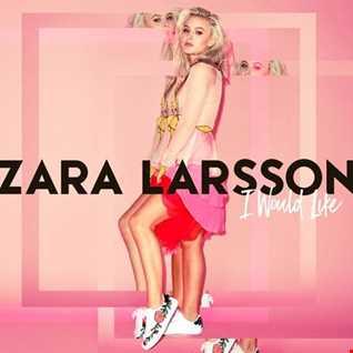 Zara Larsson   I Would Like [RichieM Extended Remix]