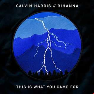 Calvin Harris   This Is What You Came For ft. Rihanna [RichieM Extended Remix]