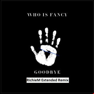 Who Is Fancy   Goodbye (RichieM Extended Remix)