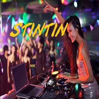 stintin mix