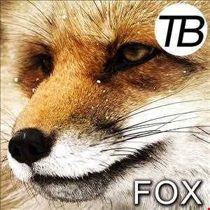 FOX - Progressive House, Electro, Dance Mixtape with the latest & unreleased tracks!