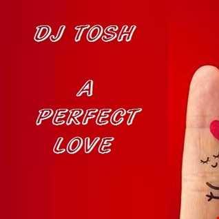 dj tosh   a perfect love