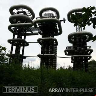 Terminus - Array Inter-Pulse