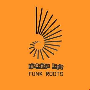 Funkrudin Krcic - Funk Roots
