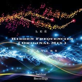 Hidden Frequencies ( Original Mix )