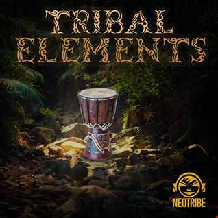 NeoTribe   Tribal Elements