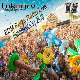 DJ FnknGrv Presents EleKtRoHoLiCs 2k16