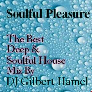 Soulful Pleasure 40 (Chillhouse)