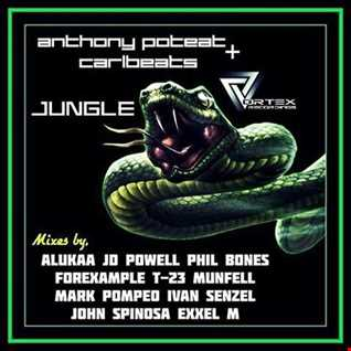 Anthony Poteat & Carlbeats   Jungle (ALUKAA Deep House Rmx)
