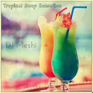 Tropical Deep Sensation - DJ Meshi Mix