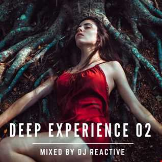 Deep Experience 02 (Mixed by Dj Reactive)