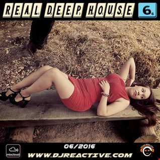 Real Deep House Volume 6 (Mixed by Dj Reactive)