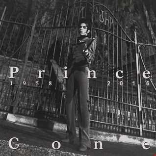 Prince Megamix