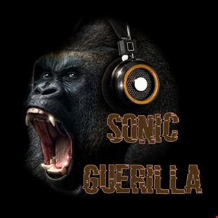 29th September 2019 Sonic Guerilla