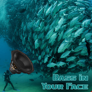 20th December 2019 Bass in Your Face