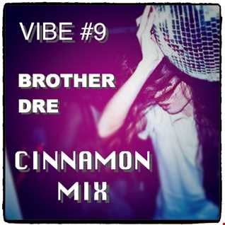 VIBE #9 - CINNAMON MIX