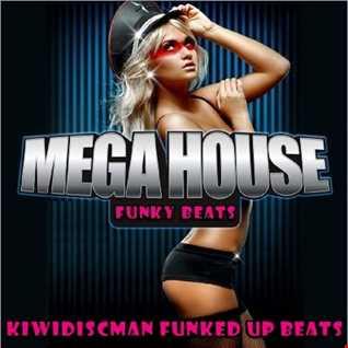 Mega House Funky Beats