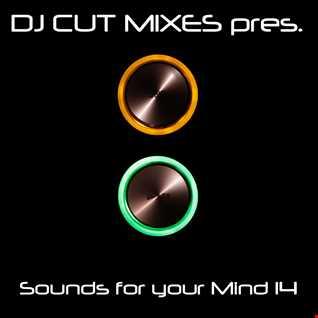 DJ CUT pres. Sounds for your Mind 014