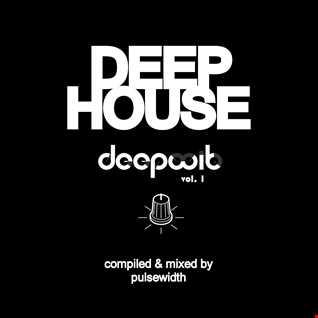 Deep House: Label Showcase DeepWit Recordings #1