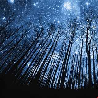 Coldplay vs Don Diablo vs Otto Knows   A Sky Full of Starlight (MonsyB Mashup)