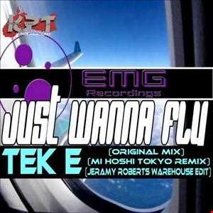 TeK E   Just Wanna Fly (Original Mix)