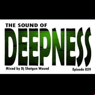 SGW The Sound Of Deepness Episode 29