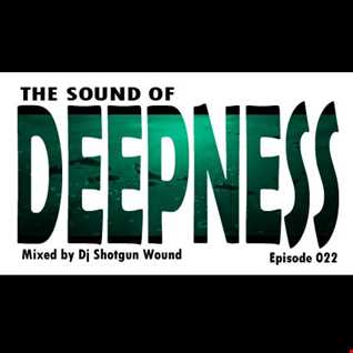 SGW The Sound Of Deepness Episode 22