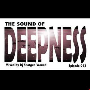 SGW The Sound Of Deepness Episode 013
