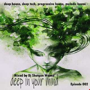 01 SGW Deep In Your MInd Episode 2