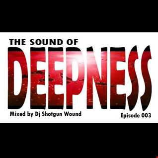 SGW the sound of deepness episode 003