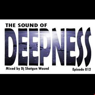 SGW The Sound Of Deepness Episode 012