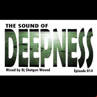 SGW The Sound Of Deepness Epiosde 014